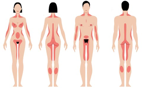 Map of male erogenous zones and female erogenous zone chart.