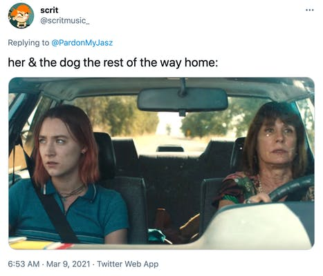 """her & the dog the rest of the way home:"" A mother and daughter sit in awkward silence in a car"