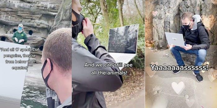 kindergarten teacher virtual field trip zoo tiktok video
