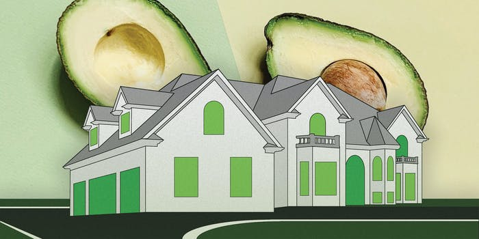 An illustration of a house with avocados.