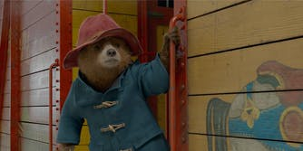 bear in blue coat and red hat holding train handlebar