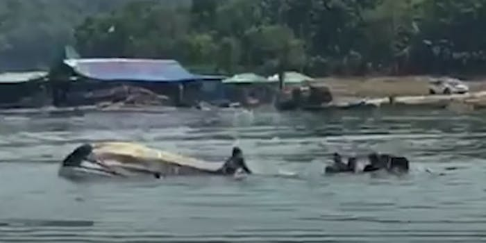 9 dead after trying to take selfie on boat