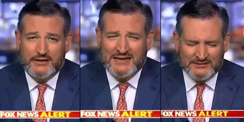 Three screenshots from a fake video showing Ted Cruz eating a fly during a Fox News interview.