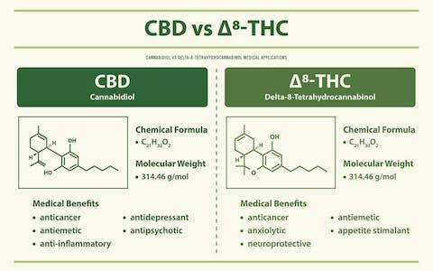 CBD vs Delta-8 THC