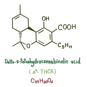 Delta-8 THC structure