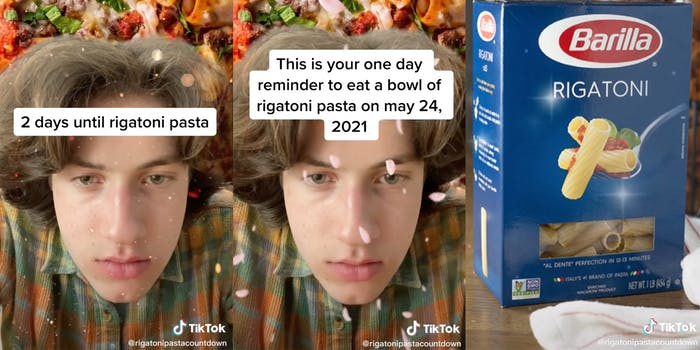 Screenshots from a countdown of one user on TikTok celebrating Rigatoni Day.