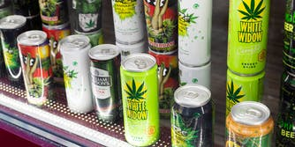 Cannabis drinks, thc drinks, cbd drinks, and weed drinks sit behind a glass door of a refrigerator