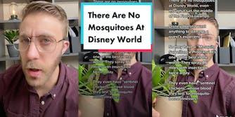 tiktoker @idea.soup explaining why disney world is mosquito free