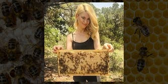 woman holds hive comb with bees