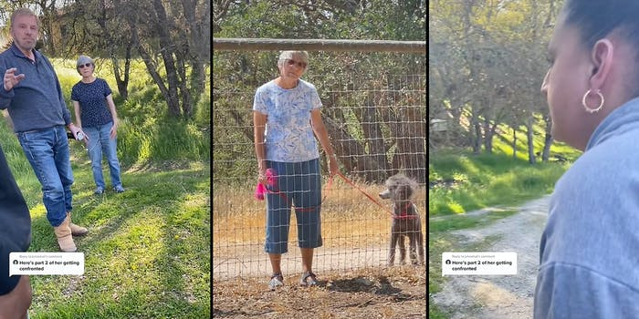 A couple (L), an old woman with a dog (C), and a woman yelling (R).