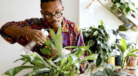 Skillshare review plants