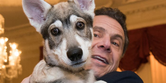 Andrew Cuomo holds dog