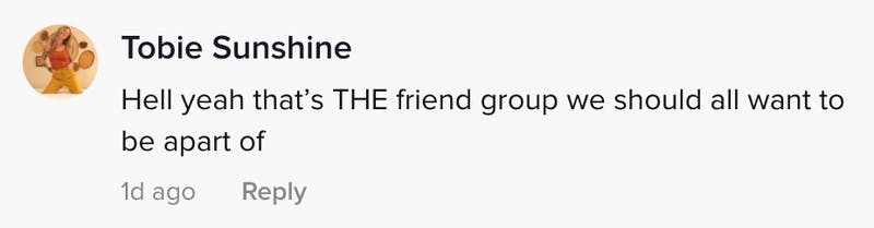 Hell yeah that's THE friend group we should all want to be a part of
