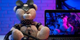 A teddy bear in BDSM attire.