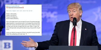 Former President Donald Trump next to a screenshot of a Telegram user hawking coins in the wake of the Arizona audit.