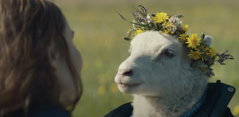 a woman looking at a lamb in a flower crown