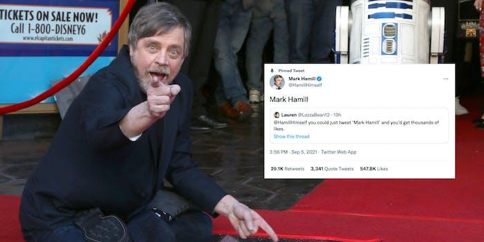 "mark hamill sitting on his hollywood star, ""mark hamill"" tweet"