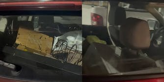 car filled with garbage and roaches