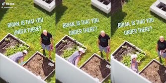 Drone footage of Brian Laundrie's parents' backyard