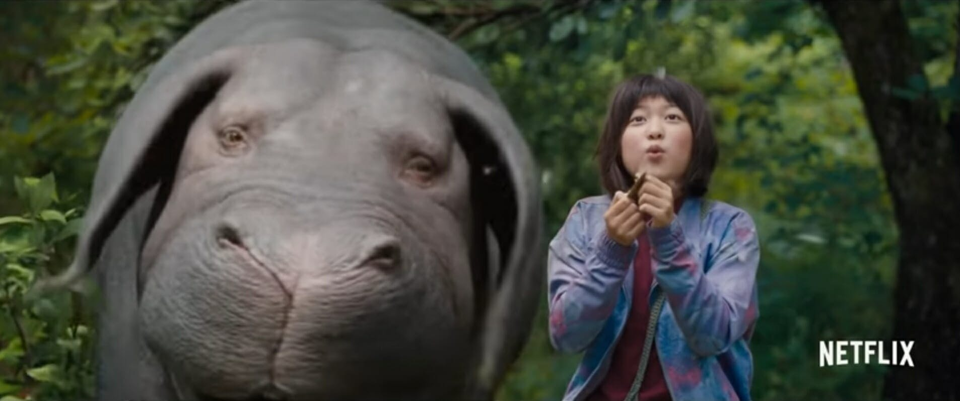 weird movies netflix : Okja