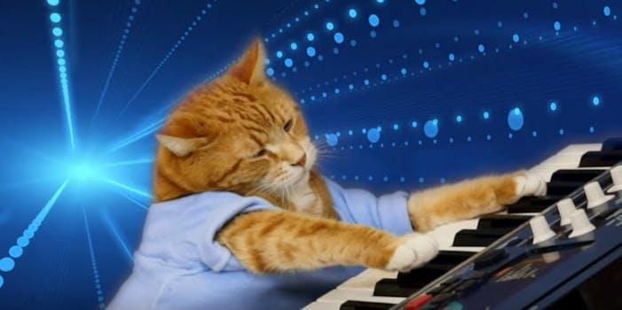 Play him off Keyboard Cat