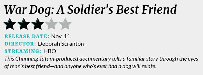 War Dog review box