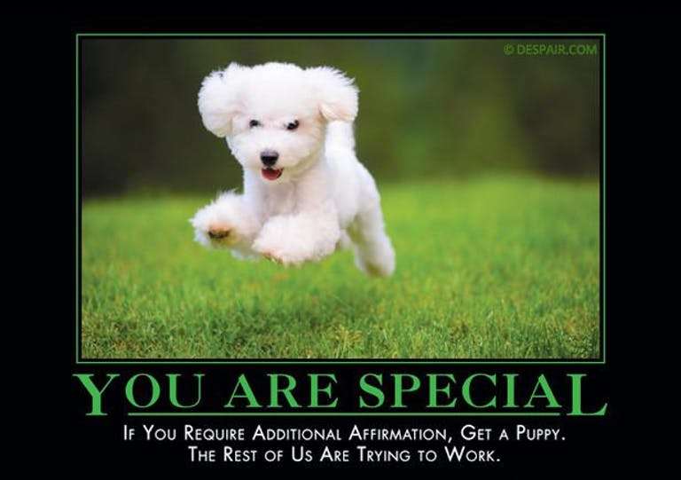you are special demotivational poster