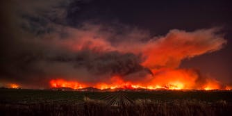 Souther California Wildfires: Here's how to help