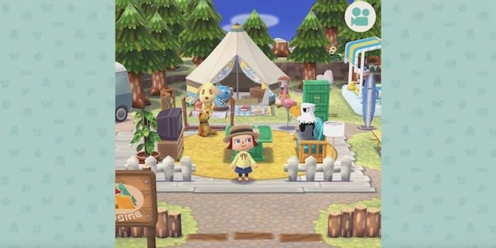 animal crossing pocket camp