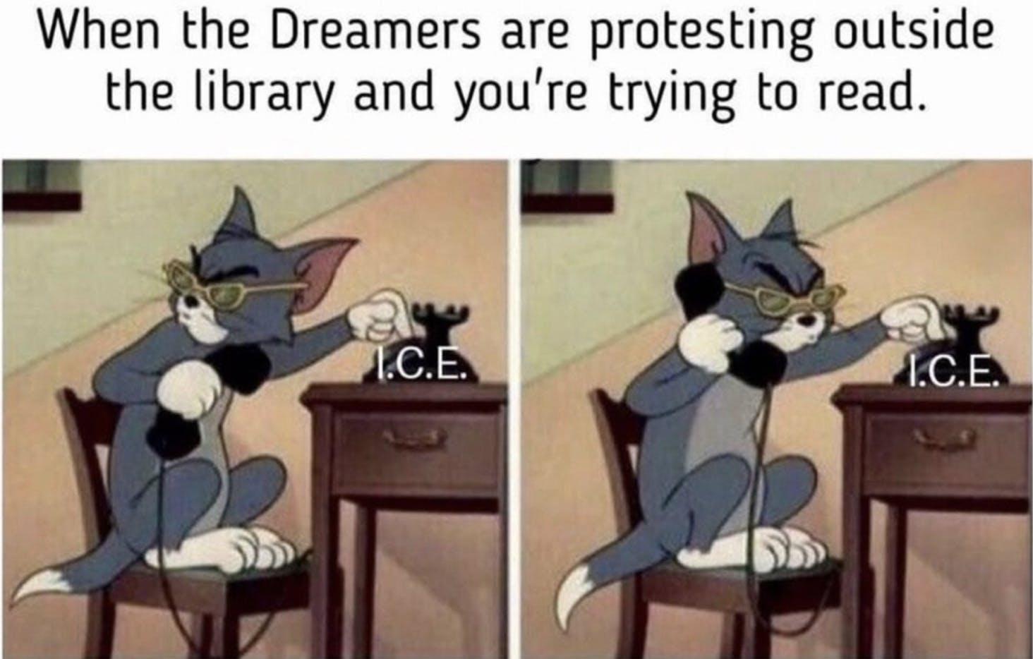 Reddit The Donald memes