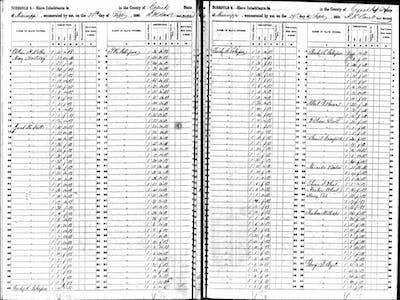 slave schedule ancestry