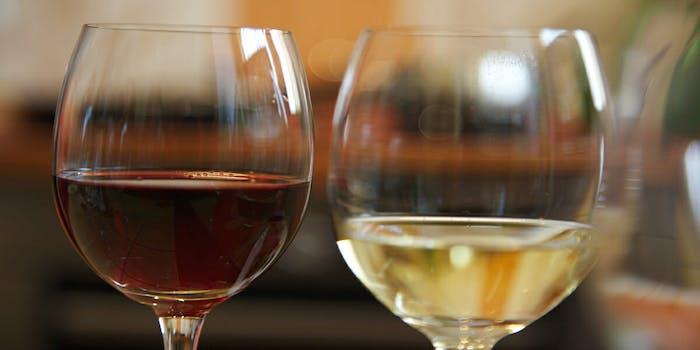 best wines wine glasses