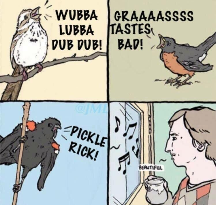 rick and morty fans iq beautiful bird meme