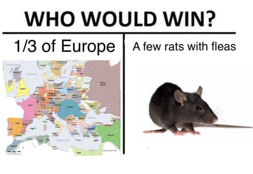 who would win rat vs europe meme