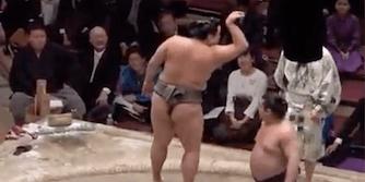 sumo salt bae