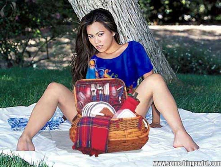 porn memes : work safe porn picnic basket somethingawful
