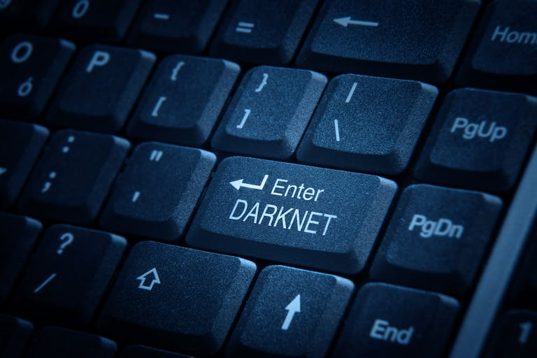 how to search the dark net