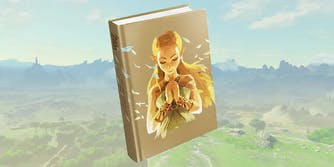 breath of the wild expanded edition