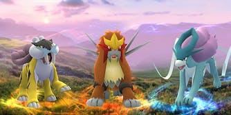 Raikou, Entei, and Suicune from Pokemon GO
