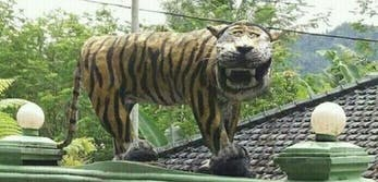 indonesian laughing tiger statue
