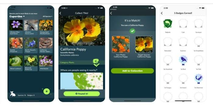 Seek app images
