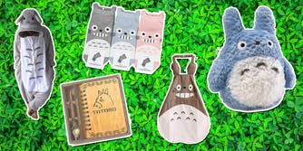 totoro collectibles