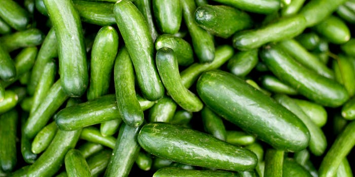 homemade sex toys : pile of cucumbers
