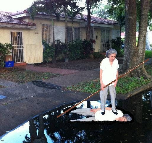 Reddit grandmother 2