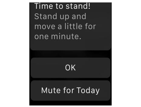 Finally, timed notification muting is coming