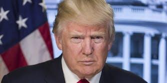President Donald Trump Official Portrait
