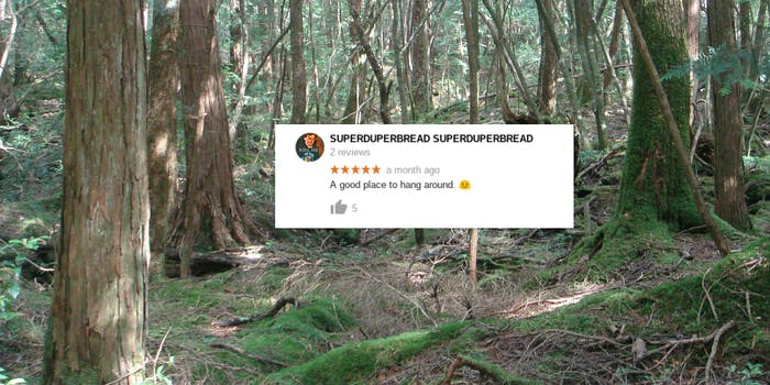 Insensitive suicide jokes plague Aokigahara's listing on Google Maps