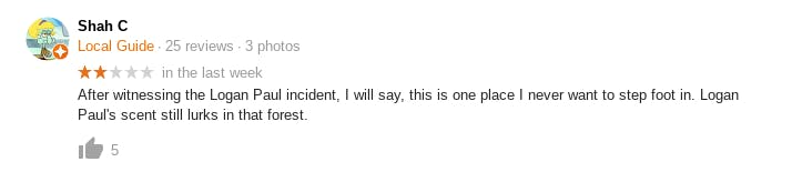 A Google user leaves an inappropriate comment on Aokigahara's Google page.