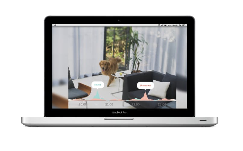 home security apps: Manything app on desktop