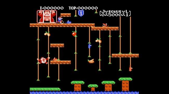 nes games: Donkey Kong Jr.